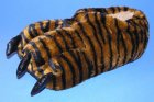 Hausschuhe Plüsch Tiger Kralle